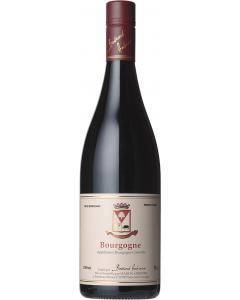 Bernard Ambroise, Bourgogne Rouge 2019, 75 cl.