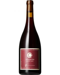 Ampelos, Pinot Noir Rho 2016, 75 cl.