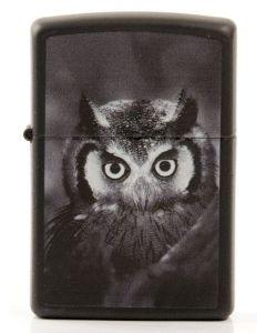 Zippo Owl